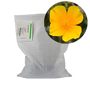 Amazon California Poppy Flower Seeds 5 Lb Bulk Wildflower