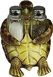 River's Edge Products Sea Turtle Salt & Pepper Set