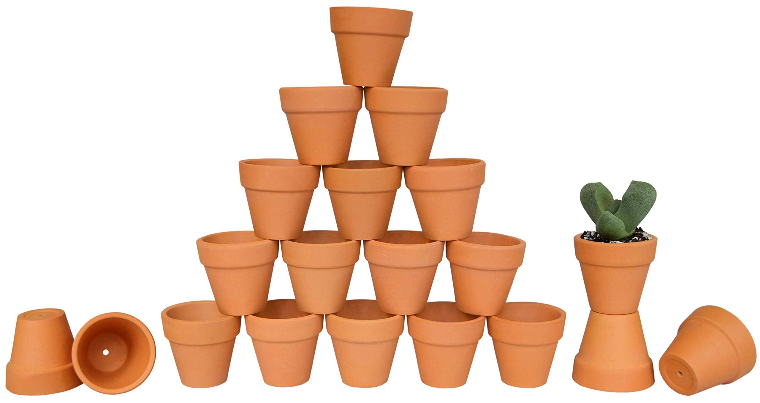 My Urban Crafts 2'' Mini Terracotta Clay Pots - Great for Succulent & Cactus Nursery Planter, DIY Craft Projects, Wedding and Party Favors (Set of 20)