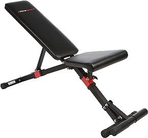 Ultrasport Hantelbank TR-1 Compact, Sit up Bank klappbar, als Bauchtrainer, Curlpult oder Hantelbank, Trainingsbank belastbar bis 500 kg, für Männer und Frauen, vielseitig einsetzbare Multi-Schrägbank