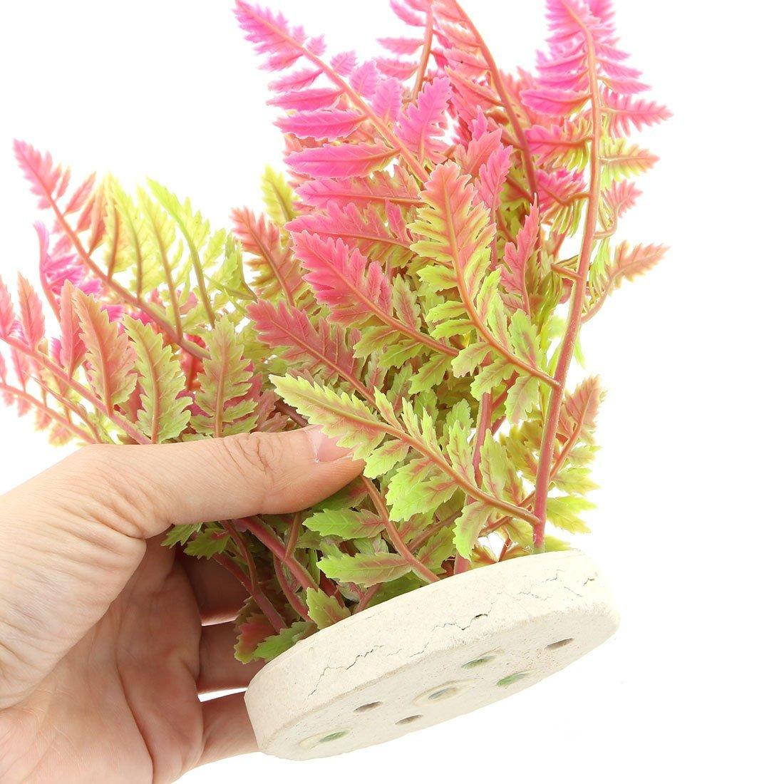 Amazon.com : eDealMax plástico acuario Artificial paisaje Debajo del agua Hierba Planta decoración Verde Fucsia : Pet Supplies