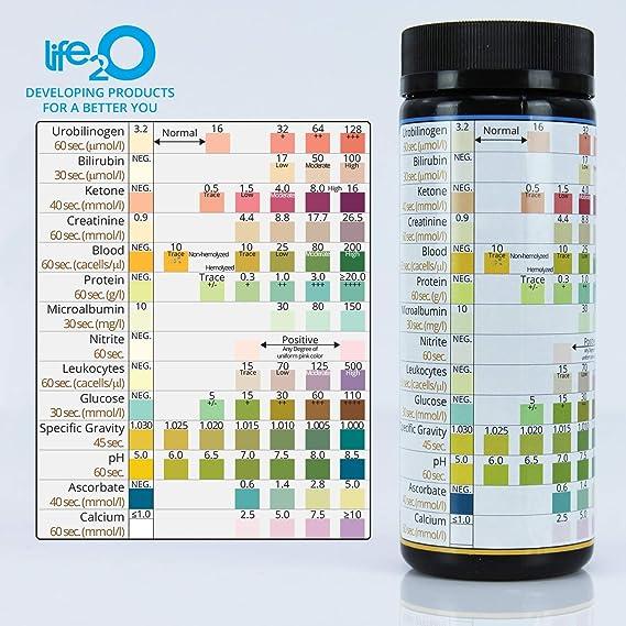proteína ceto dietética en orina