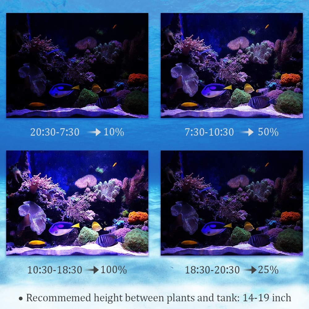 Bozily Aquarium Light Dimmable, Full Spectrum Freshwater Fish Tank Light with Replaceable Bulbs and Adjustable C-Clamp for Aquatic Plant Growth by Bozily (Image #4)