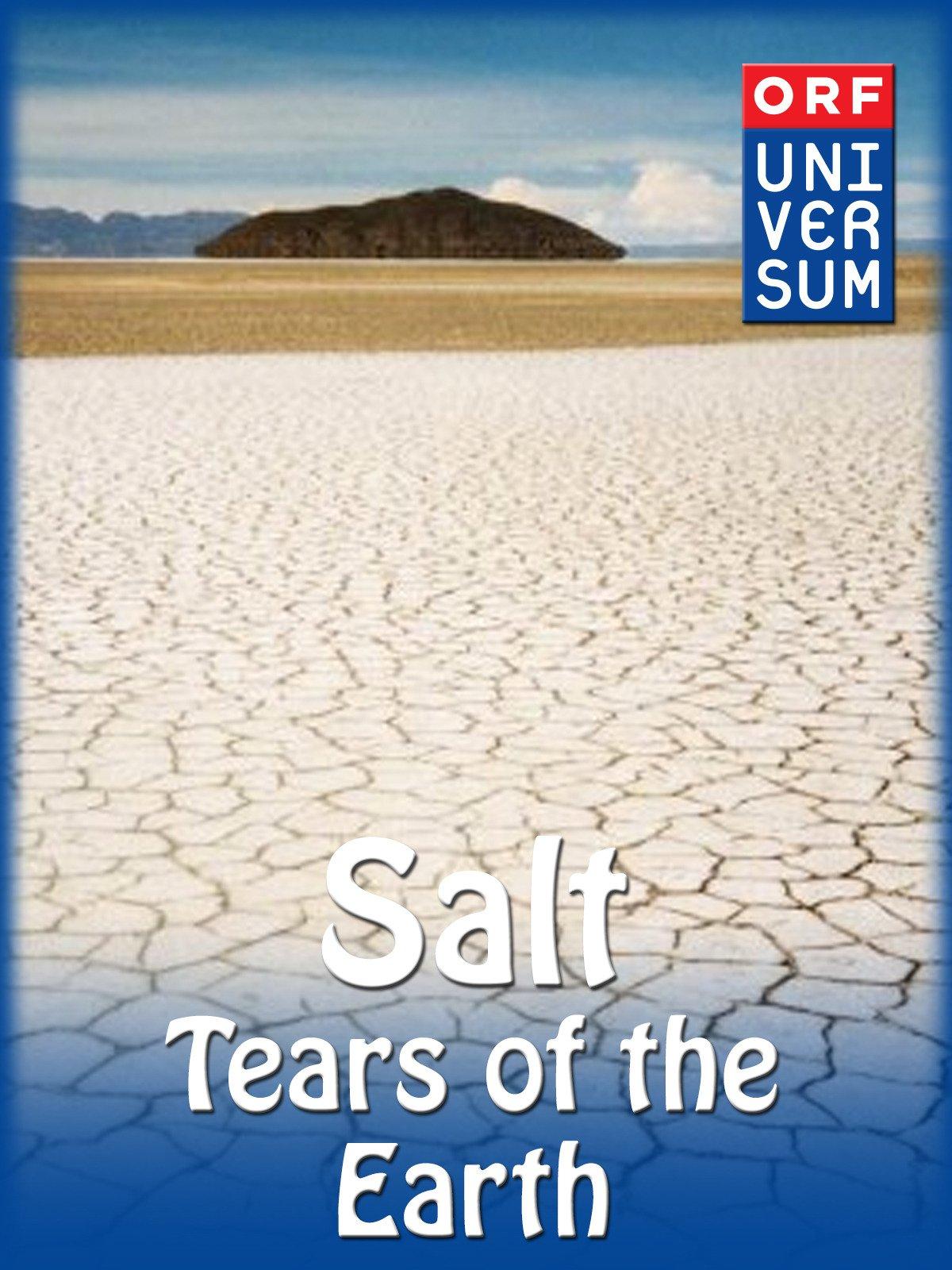 Amazon: Salt  Tears Of The Earth: Wolfgang Thaler, Martin Meszaros:  Amazon Digital Services Llc