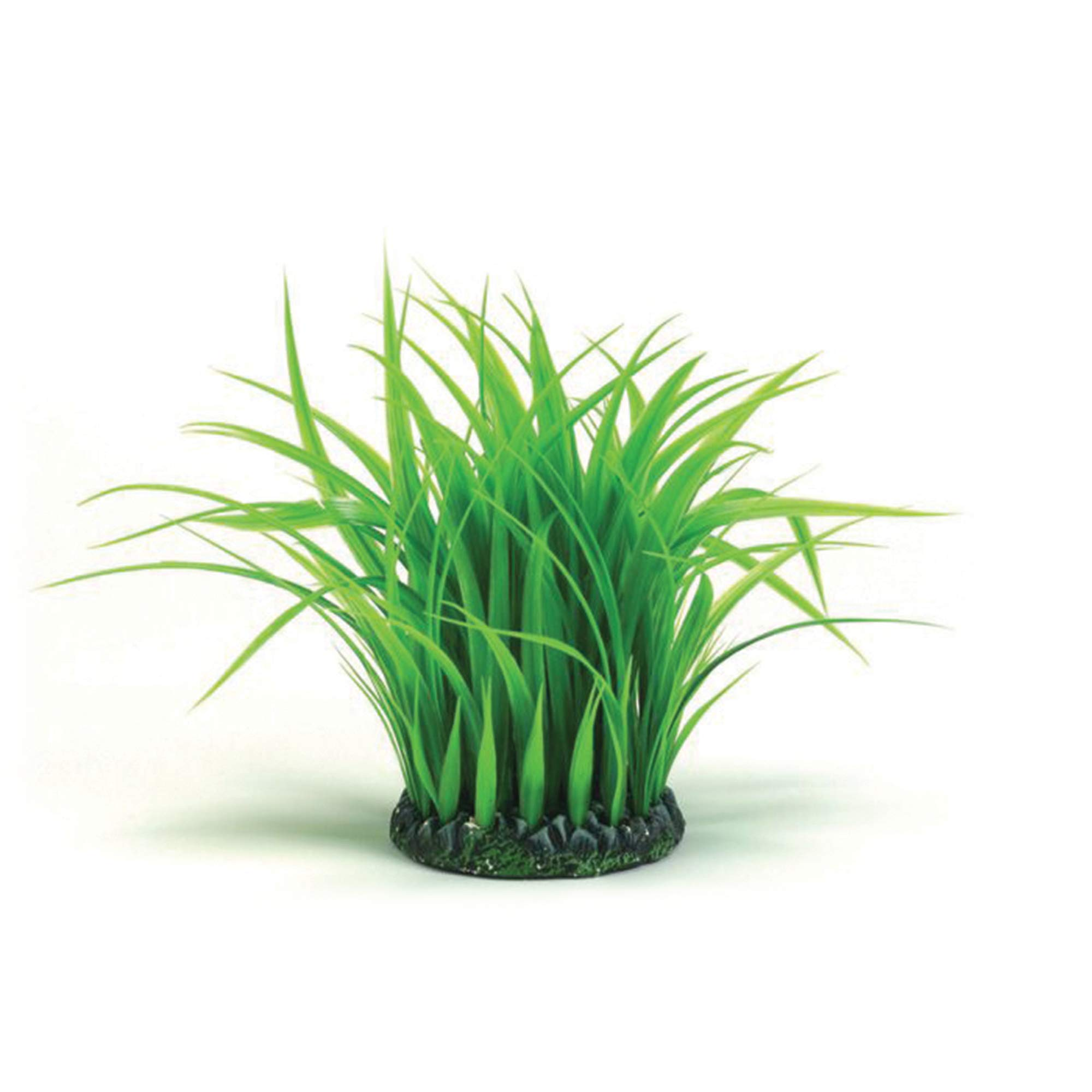 biOrb Grass Ring, Medium by biOrb
