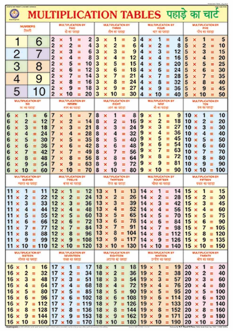 Worksheets 2to20 Table buy multiplication table chart 70x100cm book online at low prices in india reviews