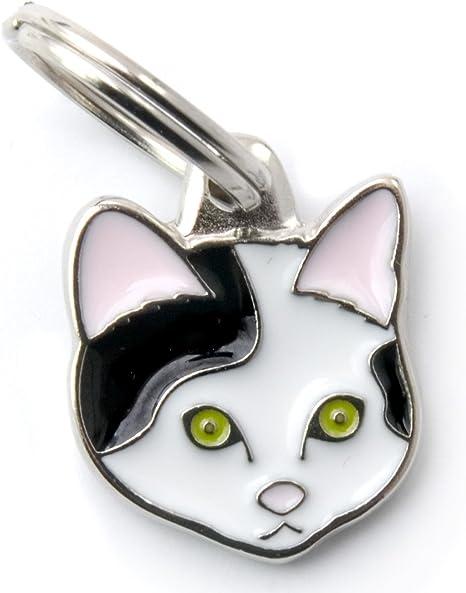 MyFamily Placas De Identificación para Gatos 50 g: Amazon.es: Productos para mascotas