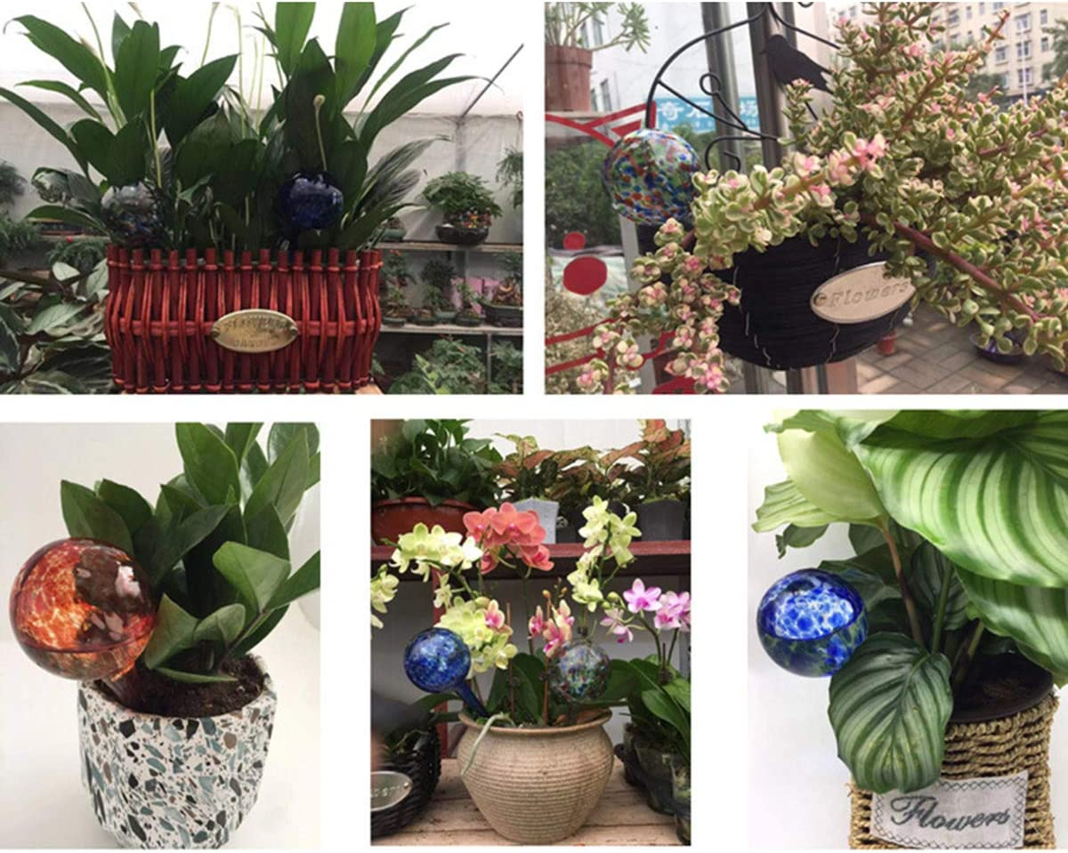 Dibiao Plant Watering Globe Plant Water Feeder,House Plants Flowers Automatic Self Watering Glass Bulb
