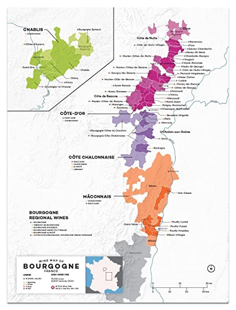 Amazoncom Wine Folly France Burgundy Wine Map Poster Print 12 x