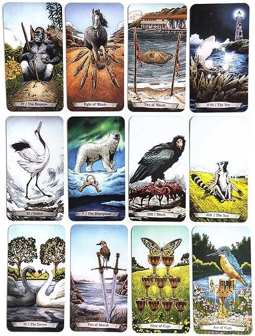animals tarot cards deck vintage antique set colorful card box game YEHN