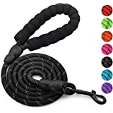 Olodeer Nylon Dog Leash with Padded Handle, 5 ft Length Dog Leash for Daily Walking and Training,Fit for Small Medium Large D