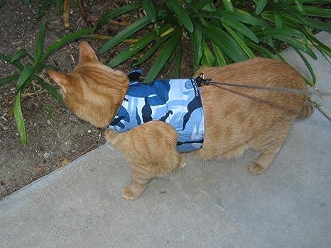 Mynwood - Arnés para Gato, Color Azul
