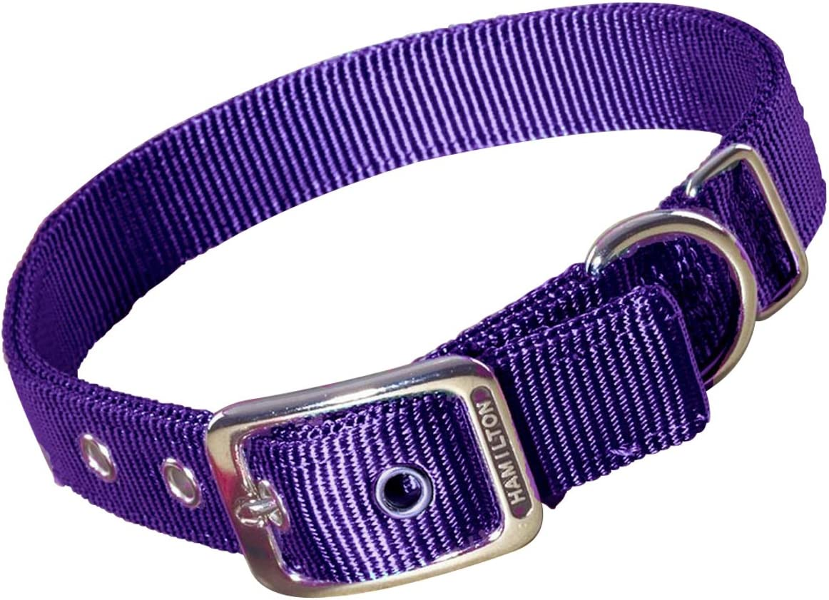 Hamilton DD 28GN Double Thick Nylon Deluxe Dog Collar Green 1-Inch by 28-Inch