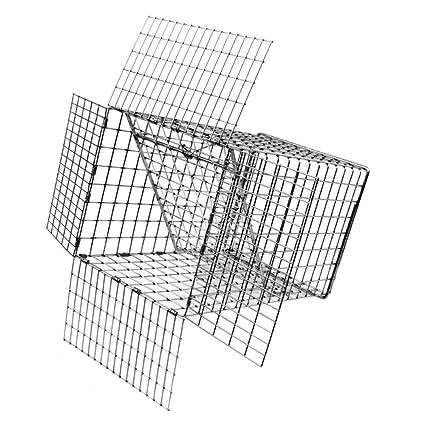 Amazon.com: Tomahawk, jaula con puerta unidireccional ...