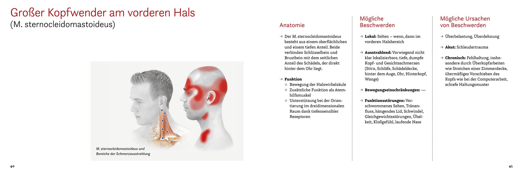 Arbeitsbuch Triggerpunkt- und Faszientherapie: Klaas Stechmann ...