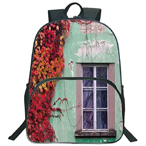 Amazon personal tailor circular front bag backpack autumn personal tailor circular front bag backpackautumnfall ivy on old house walls left publicscrutiny Gallery