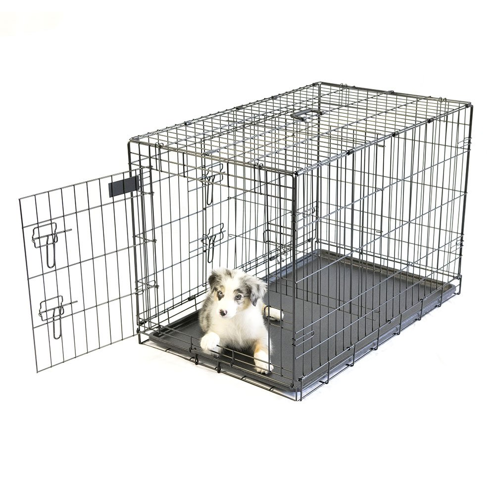 Pet Champion Deluxe 36 Inch Folding Portable 2-Door Wire Pet Crate Kennel, Large, Up to 70 Pounds by Pet Champion (Image #3)