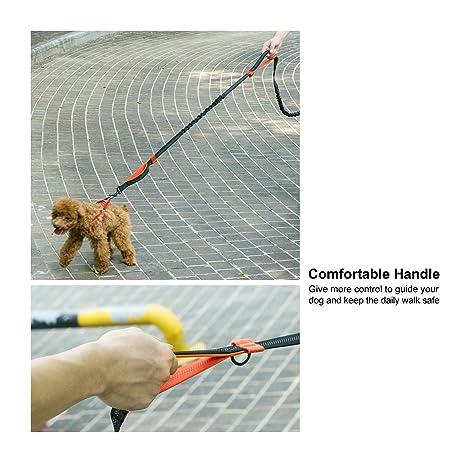 Rhodesy Manos Libres Correa de Perro con Doble Cohetes para Caminar, Correr y Andar en Bicicleta: Amazon.es: Productos para mascotas