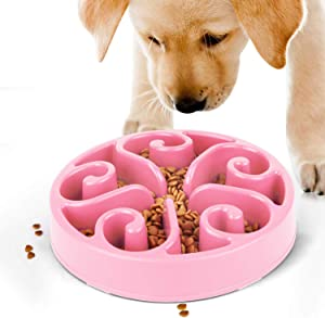 JASGOOD Slow Feeder Dog Bowl New Arriving Feeder for Fun Slow Feeding Interactive Bloat Stop Dog Bowls