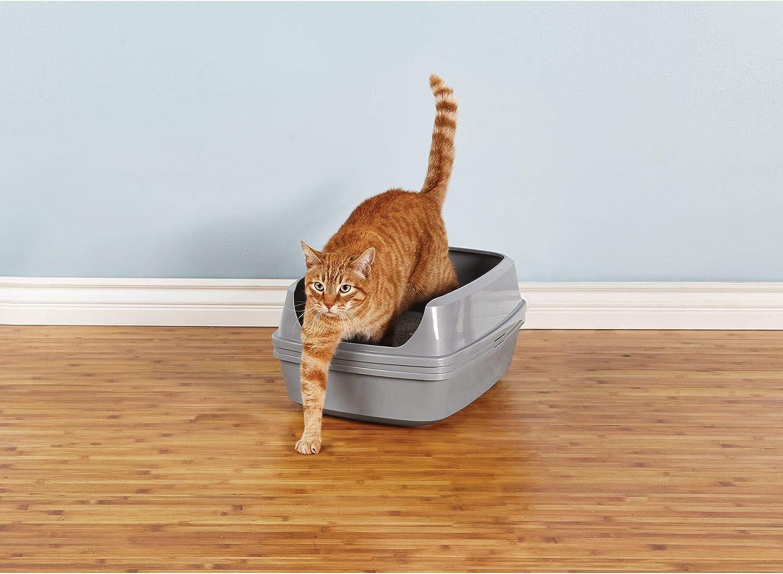 Sifting Litter Box