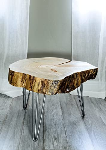 Live Edge Wood Slice Coffee Table, Side Or End Table