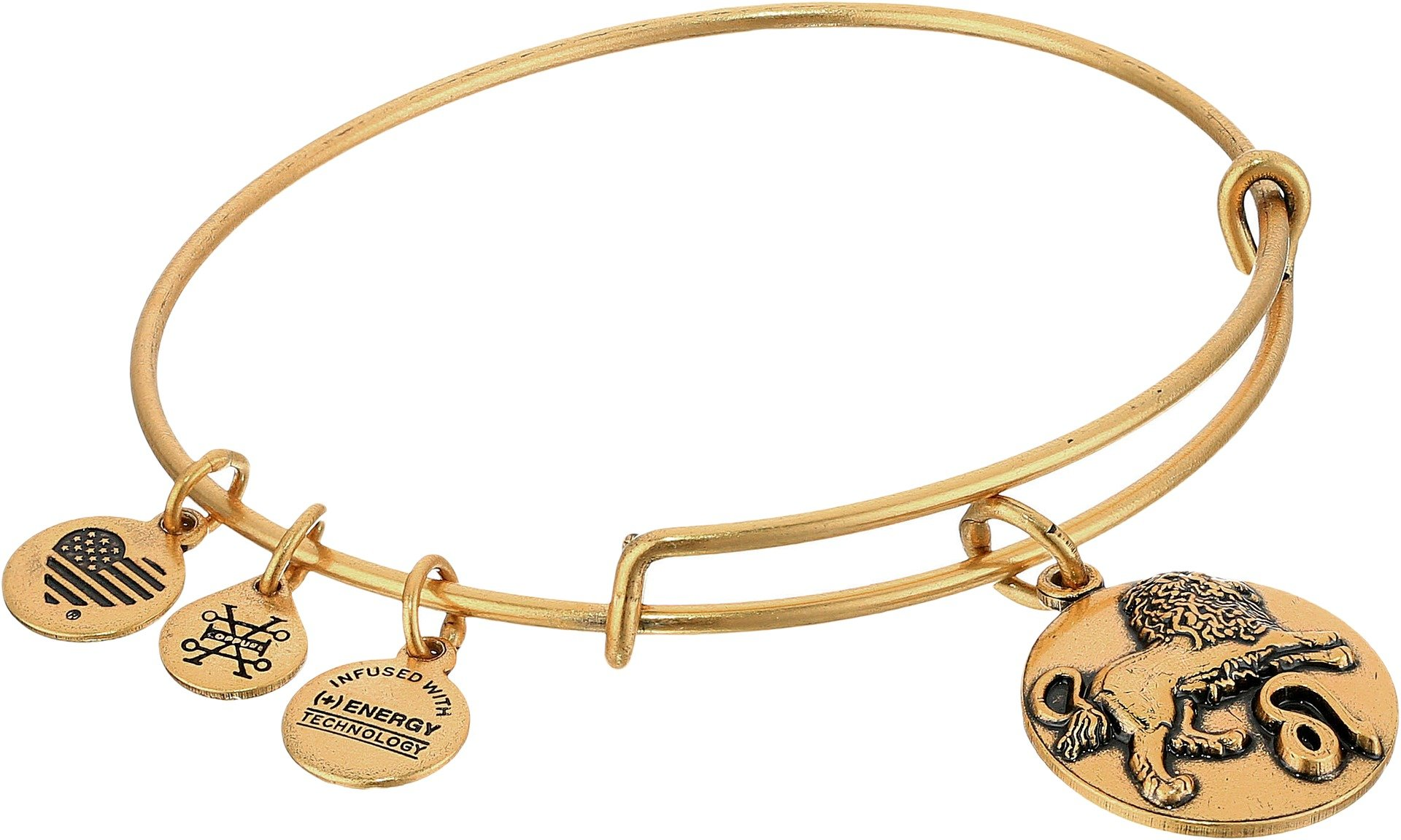 Alex and Ani Leo Rafaelian Gold Bangle Bracelet