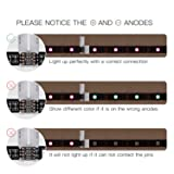 10 Pcs 4-Pin RGB LED Light Strip Connector JACKYLED PBC LED 10mm Gapless Strip to Strip Solderless Adapter for SMD 5050 Multicolor LED Strip