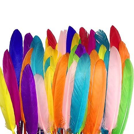 Coceca 300pz di piuma colorate