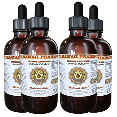 Chinese Knotweed Liquid Extract, Chinese Knotweed (Polygonum multiflorum) Tincture 4x4 oz: Health & Personal Care