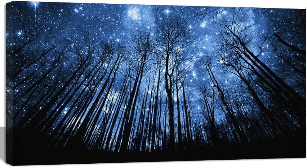 Photo Painting Digital Dark Forest Lights Canvas Art Print