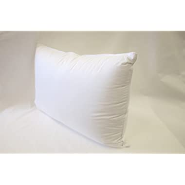 East Coast Bedding European 800 Fill Power White Goose Down Pillow. (Queen)