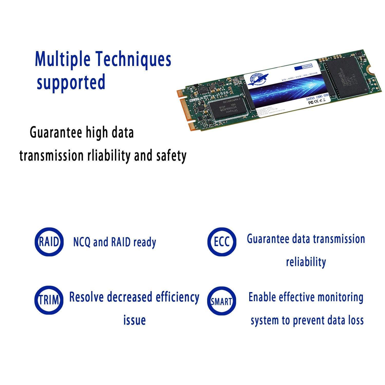 240GB Dogfish SSD M.2 2280 240GB Internal Solid State Drive SATA III PC Hard Drive M2 240