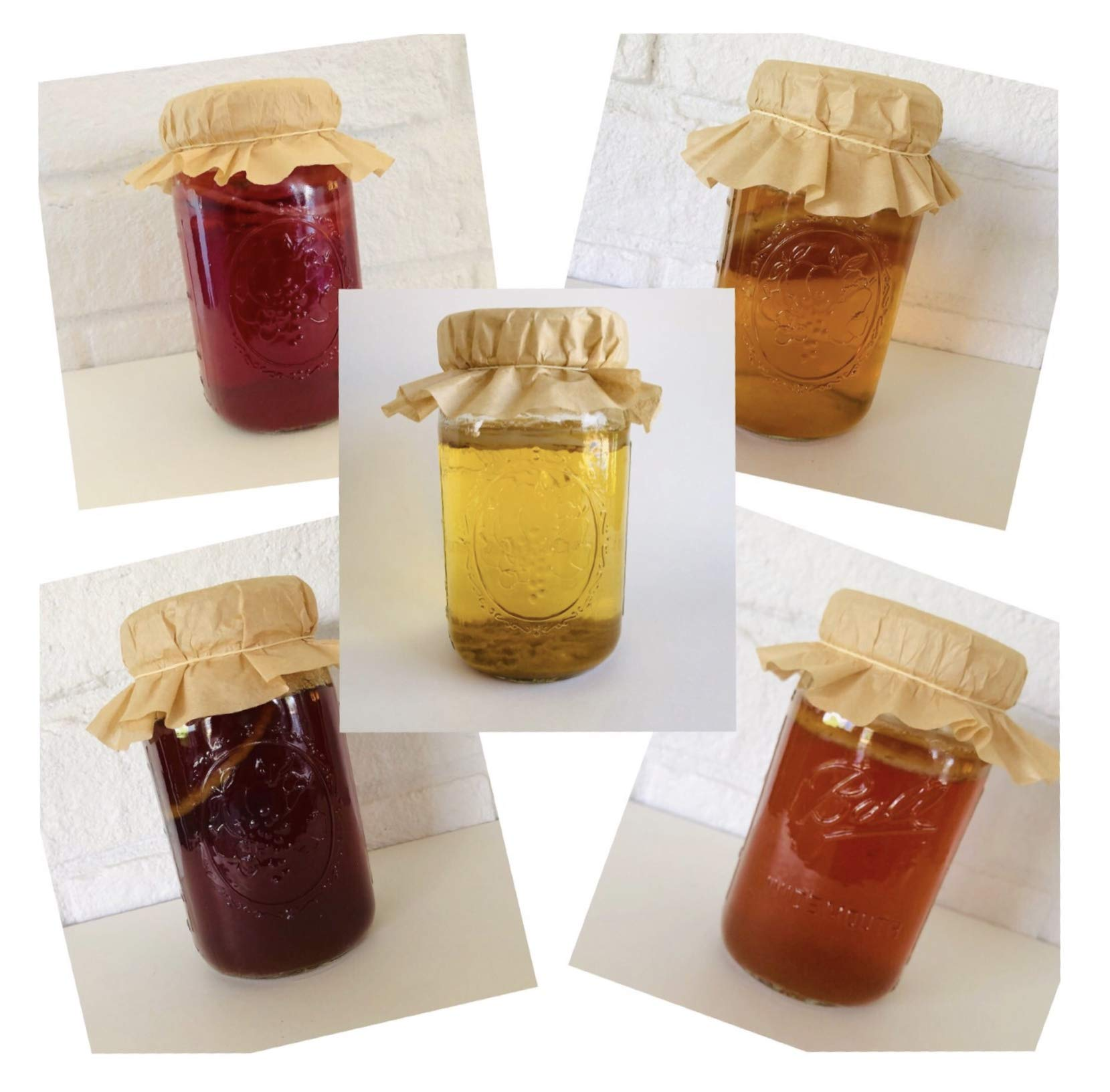 Choose any TWO 1/2 Gallon Size Kombucha SCOBY Or Vinegar Mother