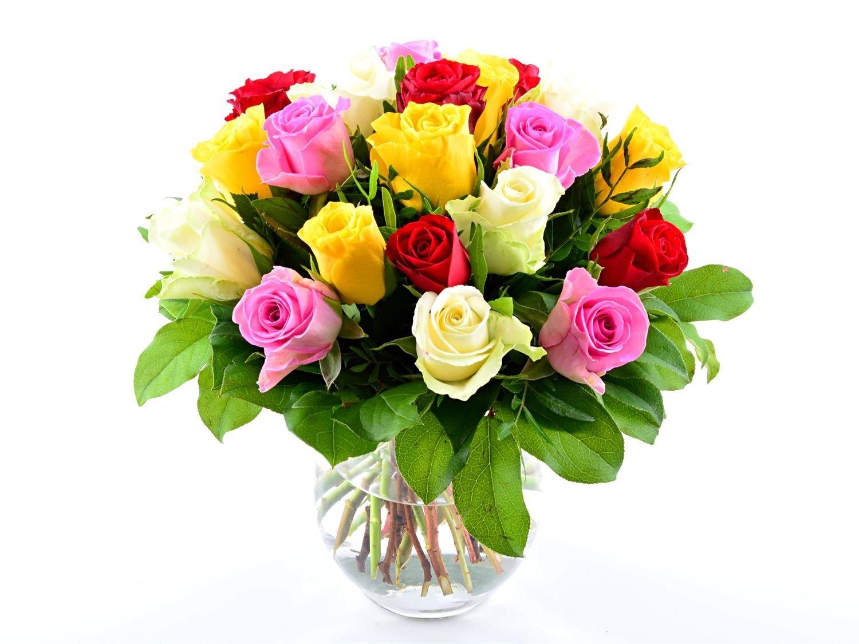 Blumenversand - Blumenstrauß zum Geburtstag - 20 Stück bunt gemischte Rosen - mit Gratis - Grußkarte zum Wunschtermin versenden