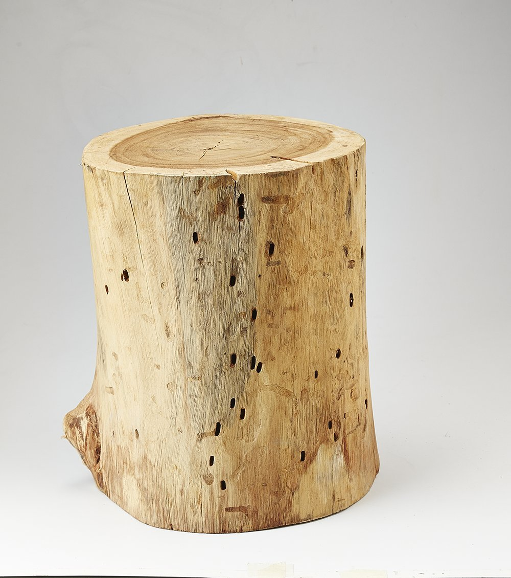 O'THENTIQUE 20 Inches Natural Wood Stump Stool | Monkey Pod Side Table Solid Acacia Wood Side Table for Home Decor