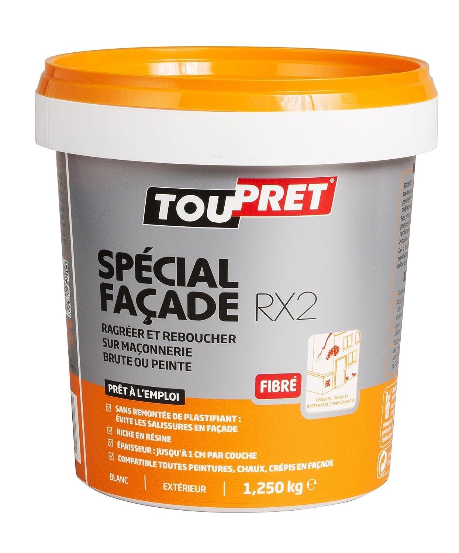 Toupret 251080 Enduit De Rebouchage Extérieur Spécial Façade RX2 Pâte 1,25  Kg: Amazon.fr: Bricolage