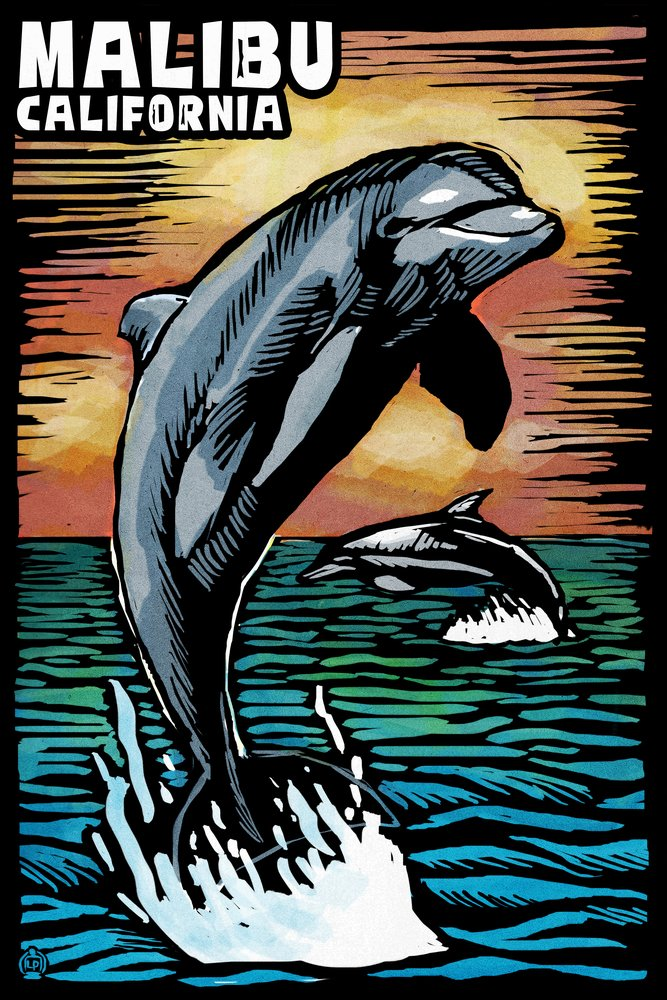 Malibu, California - Dolphin - Scratchboard (12x18 Art Print, Wall Decor Travel Poster)