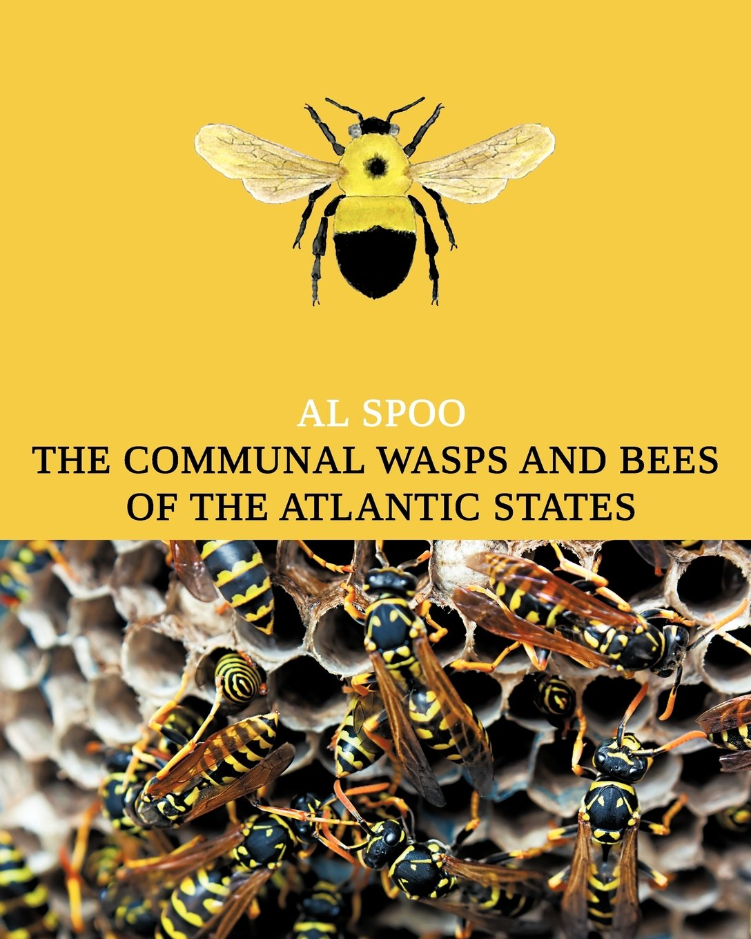 The Communal Bees and Wasps of the Atlantic States (Maine to Georgia)