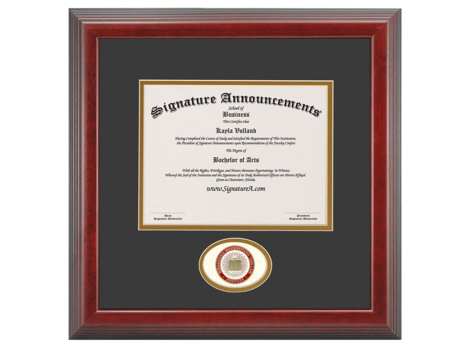 Signature Announcements Indiana Purdue-University-Indianapolis Doctorate Sculpted Foil Seal Graduation Diploma Frame 16 x 16 Cherry