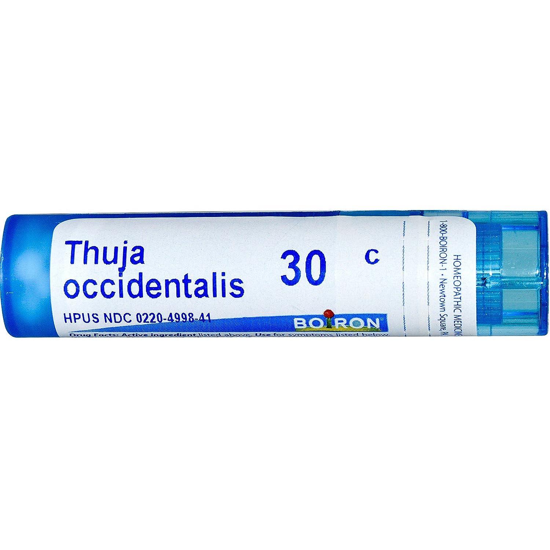 Amazon com: Boiron Homeopathic Medicine Thuja Occidentalis