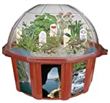 DuneCraft Dome Terrariums Exotic and Fun Plants