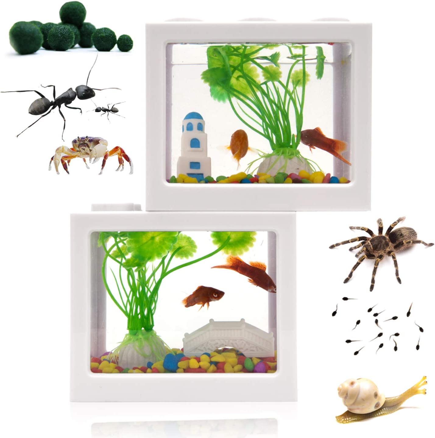 Amazon Com Small Betta Fish Tank Fish Bow Aquarium With Gravel Plants Rocks Feeder Small Fish Tank For Turtle Reptile Jellyfish Goldfish Shrimp Moss Balls Insects Table Decoration Box 2pack Small Size White