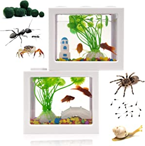 Small Betta Fish Tank,Fish Bow Aquarium with Gravel Plants Rocks Feeder,Small Fish Tank for Turtle Reptile Jellyfish Goldfish Shrimp Moss Balls Insects,Table Decoration Box for Kids Room, Office,Home