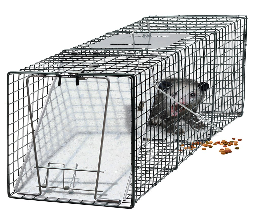 Amazon.com : OxGord Humane Pest and Rodent Control Live Animal Trap ...