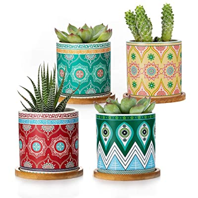 Succulent Planters Set of 4, Ceramic Mini Succulent Pots Colorful Mandalas Pattern 3 Inch Ceramic Tiny Plant Pots for Cactus, with Drainage Hole, Bamboo Trays, Premium Gift for Friends: Garden & Outdoor
