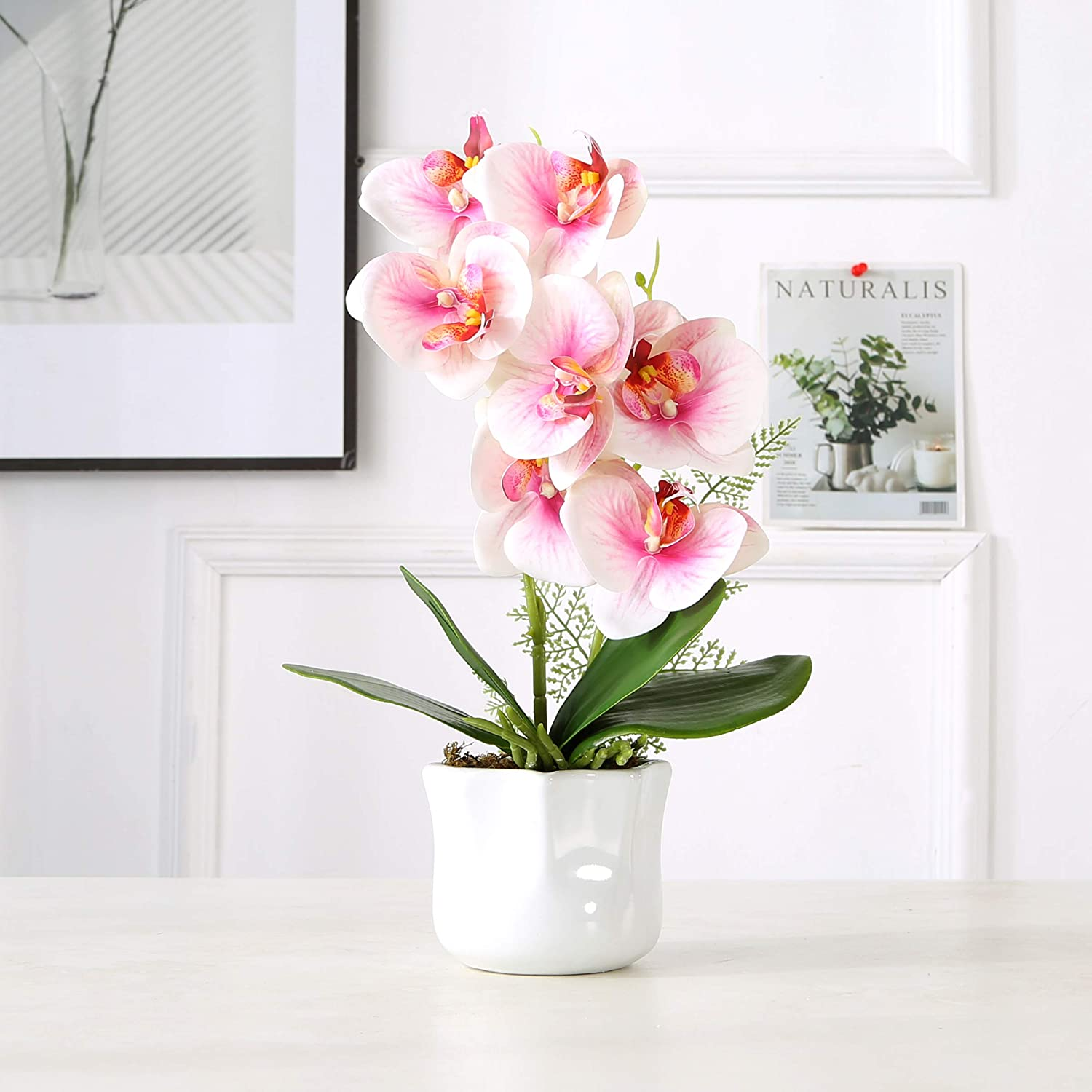 KINBEDY Artificial Bonsai Orchids Phalaenopsis with Vase Home Office Decoration Party Wedding Decor, Pink.