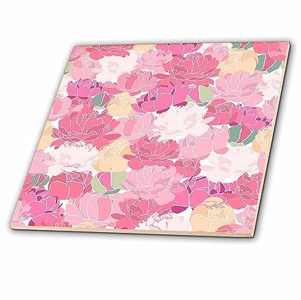 eaabcc5de5f7c Amazon.com: 3dRose Anne Marie Baugh - Patterns - Pretty Bright and ...