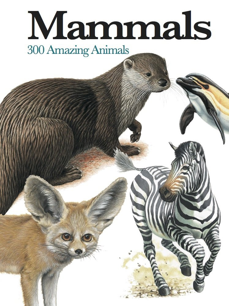 Mammals: 300 Amazing Animals (Mini Encyclopedia) pdf epub