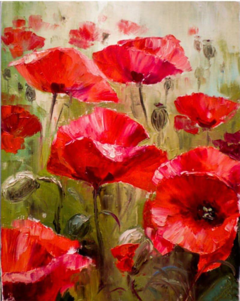 Cuadro de pintura al óleo pintado a mano con flores rojas y abstracto, por Numbers Kits modernos para decoración de habitación 40 x 50 unframed Red Flower