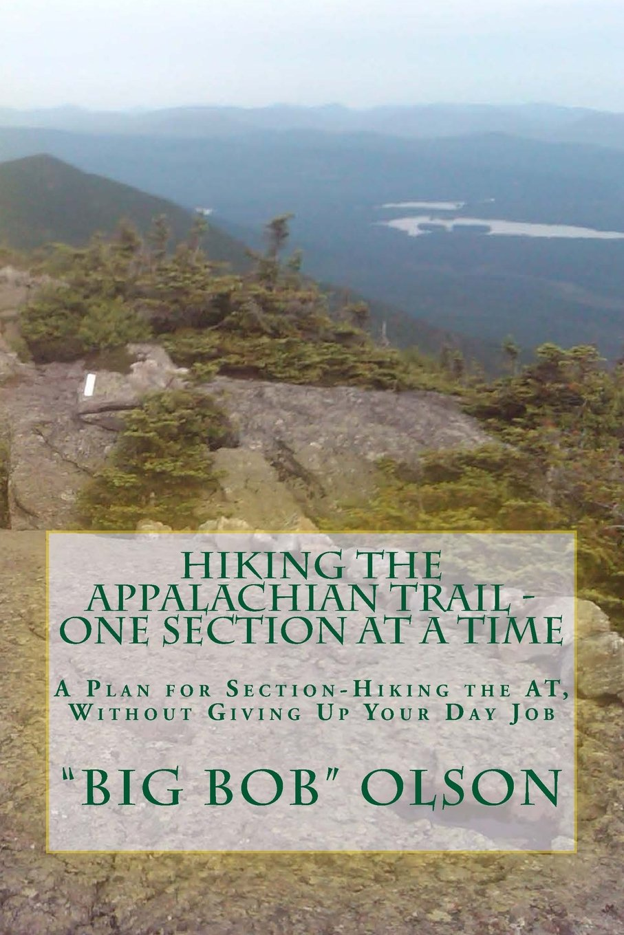 Hiking the Appalachian Trail - One Section at a Time: A Plan for Section-Hiking the AT, Without Giving Up Your Day Job PDF